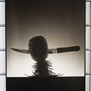 mixed media, ink on paper, black and white, knife, pineapple, realistic, realism