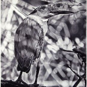 drawing, charcoal and graphite, black and white, realistic, realism, bird, heron