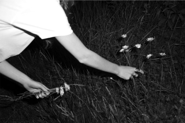 "Tim Barber, ""Untitled (Daisies)"", 2012, C-print, 16 x 20 inches, Edition1/5"