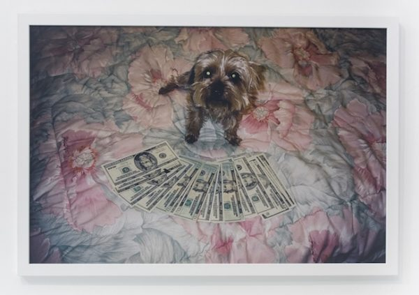 Andrew Jeffrey Wright, photograph, photo, digital, money, humor