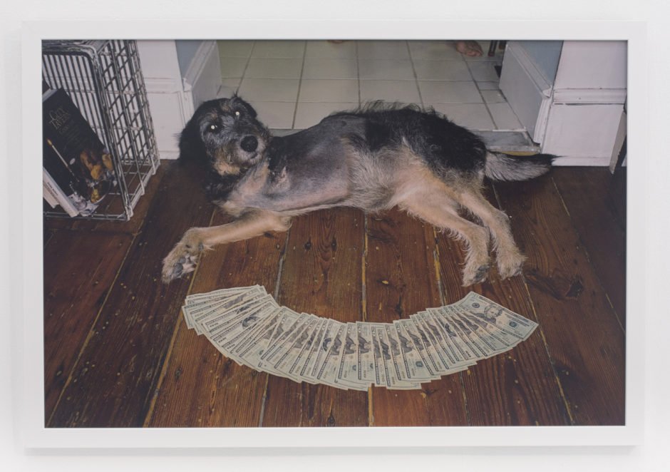 "Andrew Jeffrey Wright, ""3 legged dog on floor"", 2010, digital c-print, 24 x 36 inches"