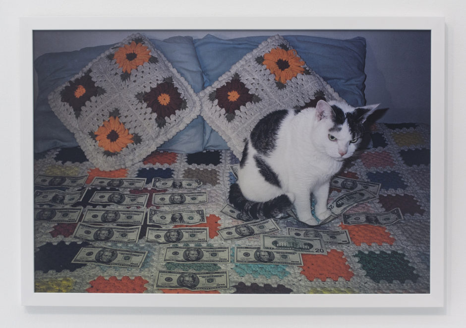 "Andrew Jeffrey Wright, ""Angry looking cat sitting on money"", 2003, digital c-print, 24 x 36 inches"